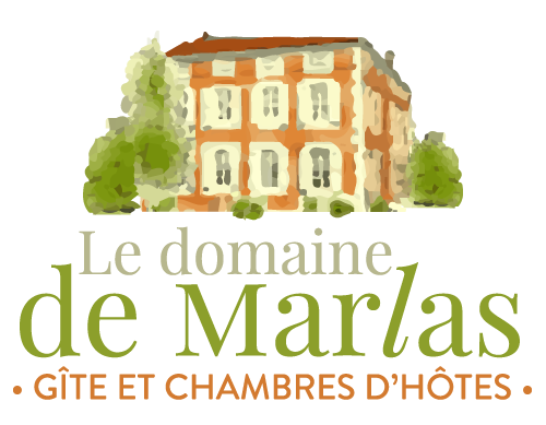 logo pied de page Domaine de Marlas